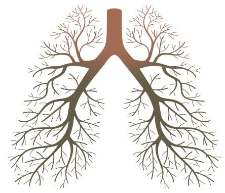 Consumo de ar pelos pulmões